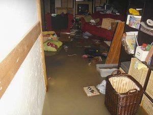 septic backup in basement